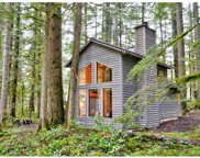 74604 E ROAD 24 Lot 30, Rhododendron image