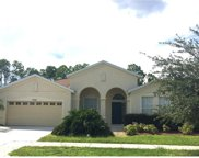 2561 Hobblebrush Drive, North Port image