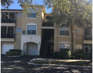 5125 Palm Springs Boulevard Unit 4206, Tampa image