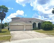 10204 Meadow Crossing Drive, Tampa image
