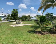 30421 Palm, Big Pine image