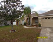 14831 Redcliff Drive, Tampa image