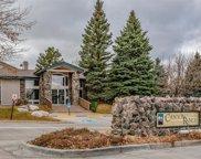 8406 Pebble Creek Way Unit 201, Highlands Ranch image