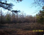 885 Rowe Pond Rd., Conway image