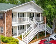129 Egret Run Ln. Unit 324, Pawleys Island image