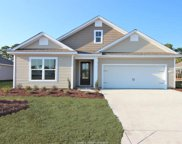 323 Great Harvest Road, Bluffton image
