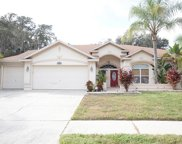 2928 Folklore Drive, Valrico image