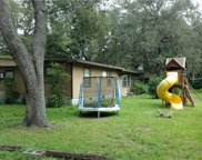 18203 Mount Olive Drive, Dade City image