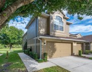 18923 Duquesne Drive, Tampa image
