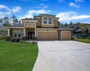4118 CARRIAGE CROSSING LN, Orange Park image