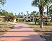 5440 Hawthorn Woods Way, Naples image