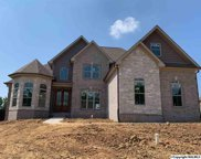 22858 Bluffview Drive, Athens image