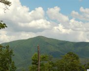 4228 Wears Valley Rd., Sevierville image