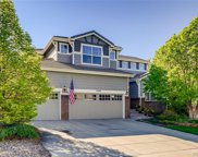 4574 Heartwood Way, Castle Rock image