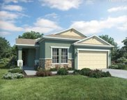 10671 Cardera Drive, Riverview image