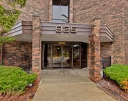 925 Spring Hill Drive Unit 209, Northbrook image