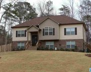 13331 Sylvia Dr, Lakeview image