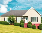 906 Ransome Drive, Oneonta image