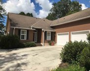 428 Mohican Dr., Georgetown image
