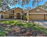 4319 River Birch Drive, Spring Hill image
