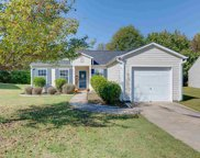 118 White Willow Court, Taylors image