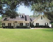 20111 Old Trilby Road, Dade City image