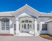6611 Glen Arbor Way, Naples image