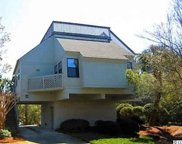 59 Blue Crab Way, Pawleys Island image