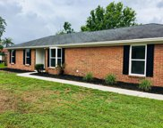 1132 LONDONDERRY DR, Orange Park image