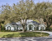 7907 VINEYARD LAKE RD N, Jacksonville image
