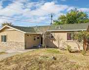 7627  Camomile, Citrus Heights image
