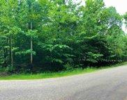 TBD Douglas Lake Road Unit Lot 115, Pellston image