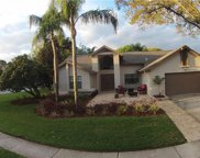 2893 Allapattah Drive, Clearwater image