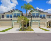 11704 Crowned Sparrow Lane, Tampa image