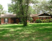 6126 Native Woods Drive, Tampa image