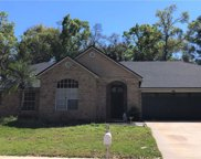 734 Swaying Palm Drive, Apopka image