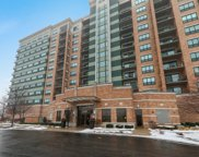 6420 Double Eagle Drive Unit 1002, Woodridge image