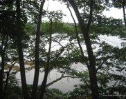 445A River Road, Cushing image