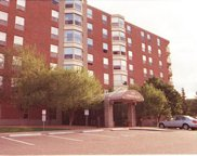 1425 W 28th Street Unit #519, Minneapolis image