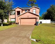 607 Gull Drive, Poinciana image