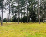 35940 Ramsey Ridge Drive, Dade City image