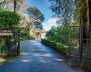 4 Woodhaven Road, Ross image