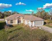 185 Conch Drive, Kissimmee image