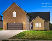 1019 Shirley Drive, Clarksville image