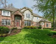 24880 North Wildberry Bend, Cary image