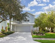 5166 Sterling Manor Drive, Tampa image