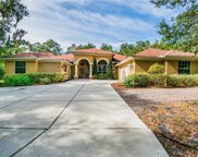 22220 Skyview Circle, Brooksville image