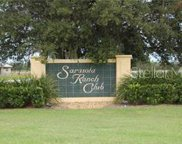 Singletary Road, Myakka City image