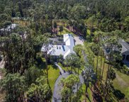 5340 Hawthorn Woods Way, Naples image