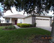 360 Crystal River Drive, Poinciana image